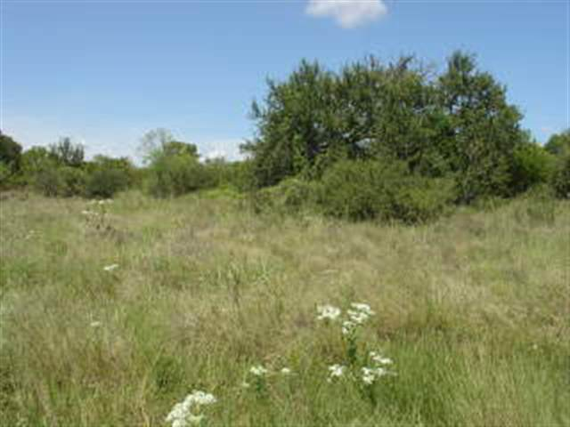 Additional photo for property listing at 402 Shale  Horseshoe Bay, Texas 78657 Estados Unidos