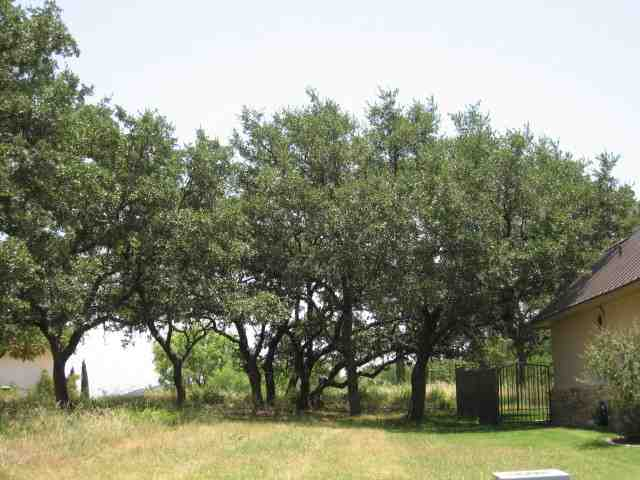 Additional photo for property listing at A8085 Florentine  Horseshoe Bay, Texas 78657 Estados Unidos