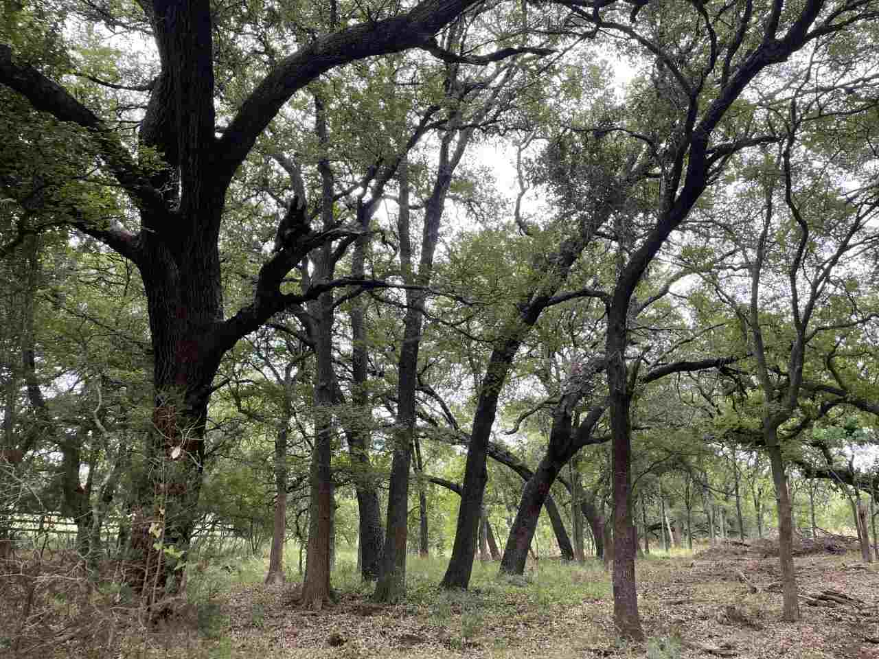 Additional photo for property listing at Lot 120 Overlook Parkway Lot 120 Overlook Parkway Horseshoe Bay, Texas 78657 Estados Unidos