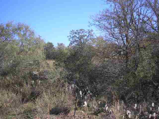 Additional photo for property listing at lot 109 Chesterfield  Kingsland, Texas 78639 Estados Unidos