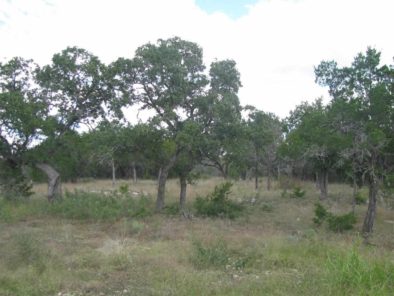 Additional photo for property listing at 320 Capstone Drive  Marble Falls, Texas 78654 Estados Unidos