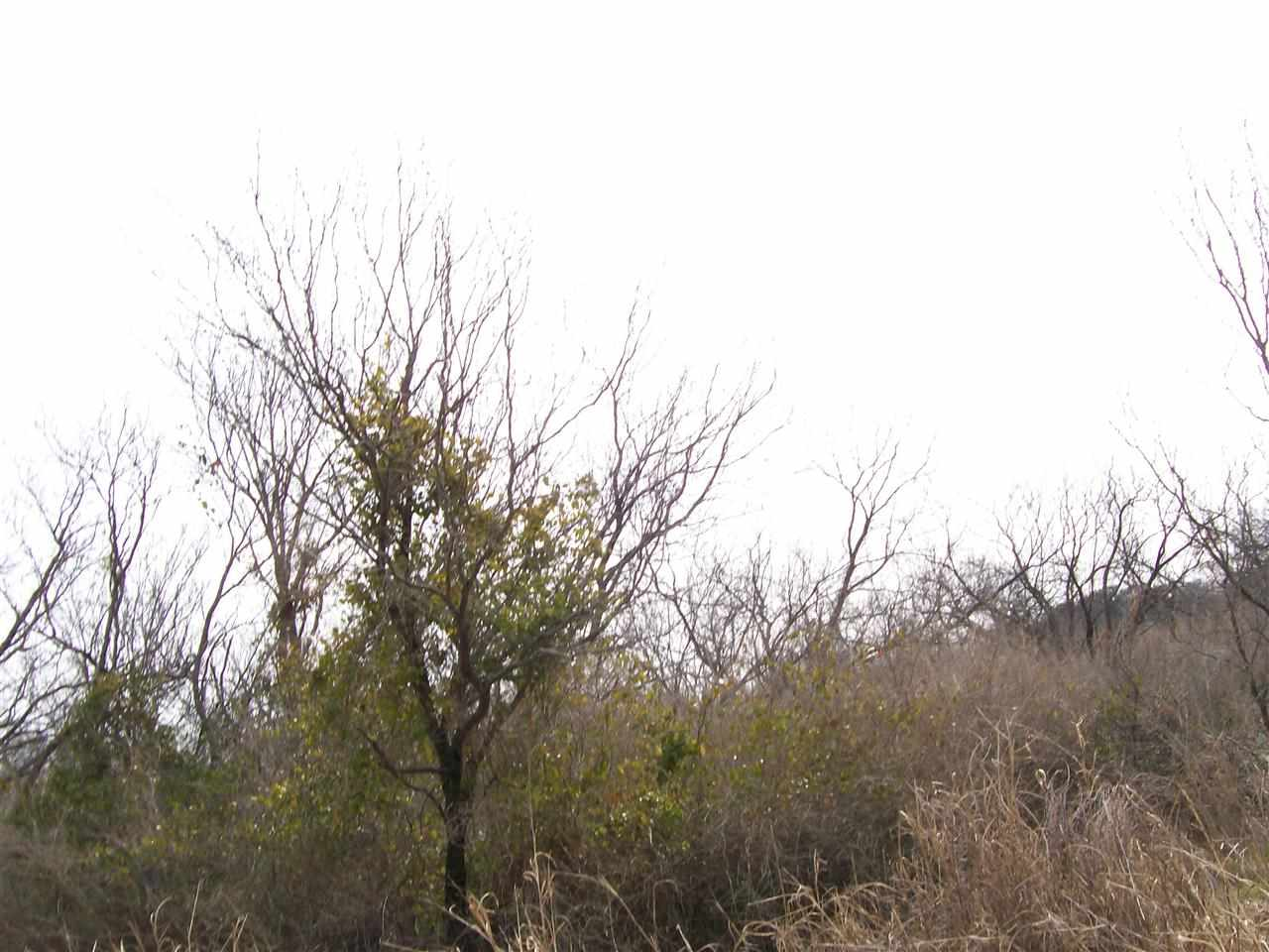 Additional photo for property listing at W College St.-Blk 42 All  Llano, Texas 78643 Estados Unidos