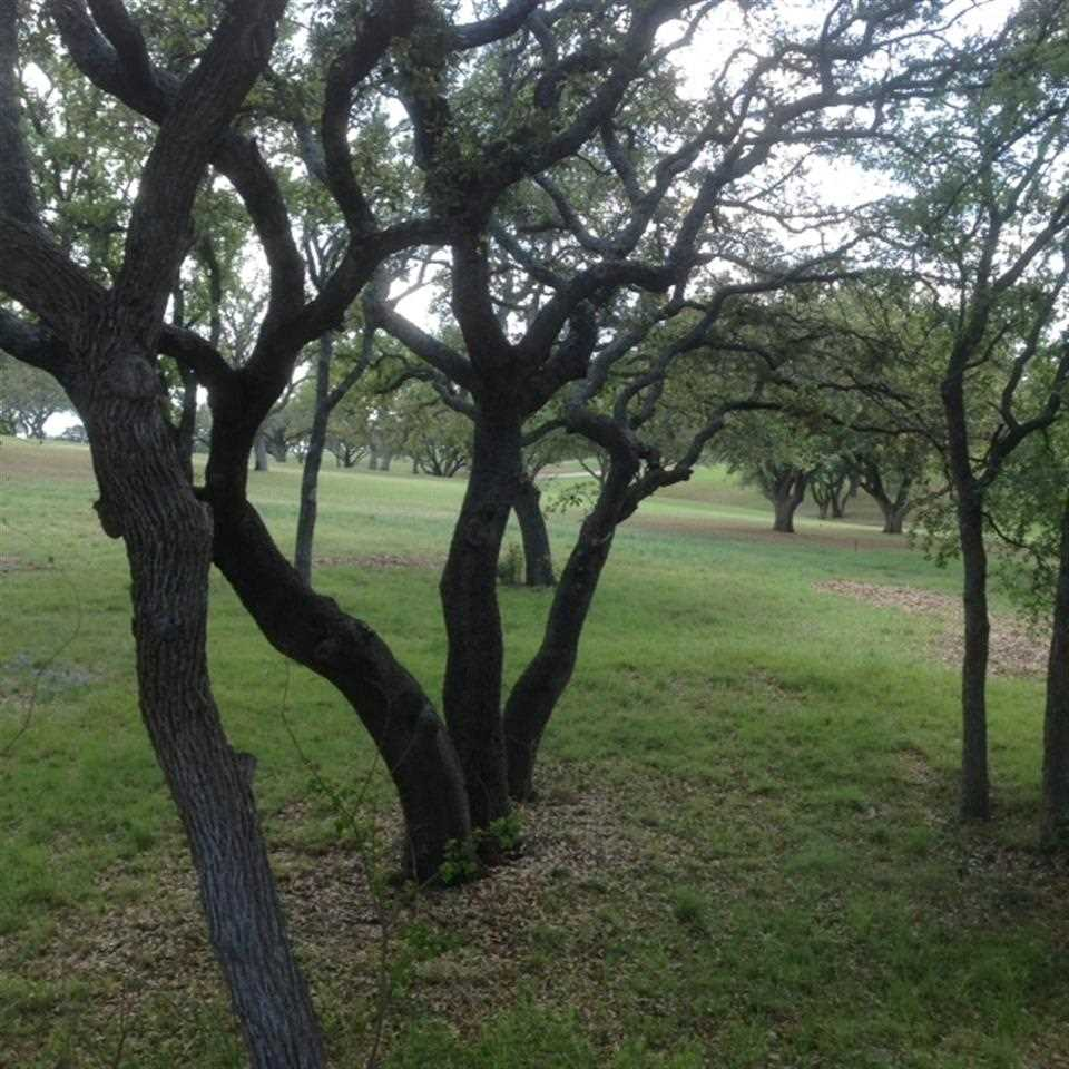 Additional photo for property listing at A8039 Brandywine  Horseshoe Bay, Texas 78657 Estados Unidos