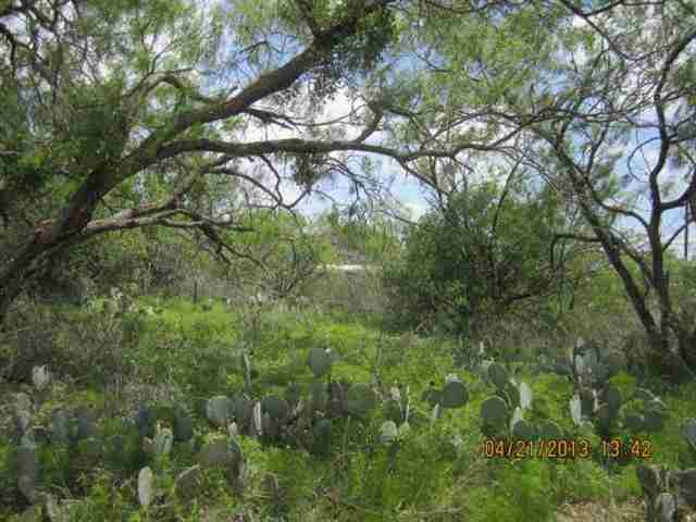 Additional photo for property listing at Lot 502 Cactus Trail  Kingsland, Texas 78639 Estados Unidos