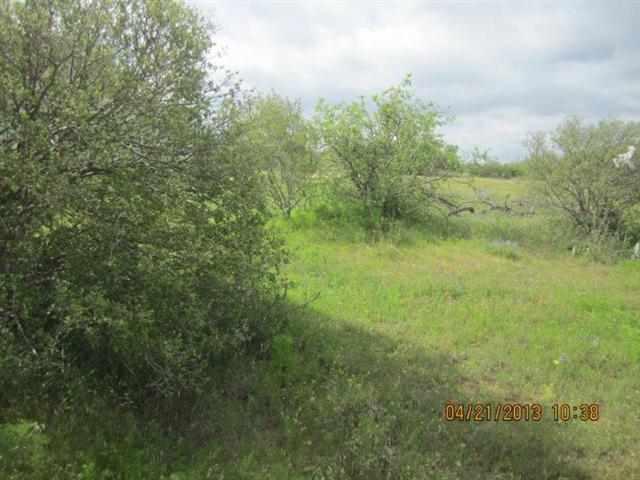 Additional photo for property listing at lot 17 Midland  Kingsland, Texas 78639 United States