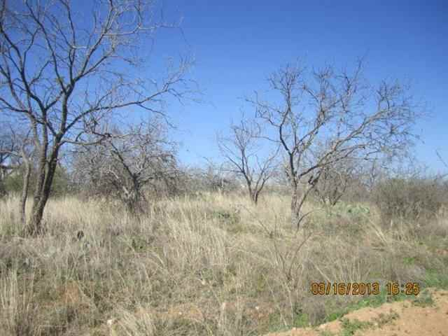 Additional photo for property listing at 1028,1029 Dilley  Kingsland, Texas 78639 Estados Unidos