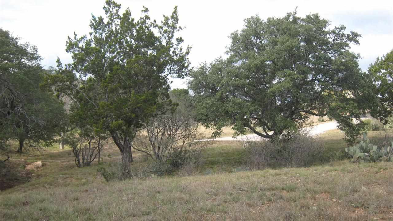 Additional photo for property listing at W3128 Desert Rose  Horseshoe Bay, Texas 78657 Estados Unidos