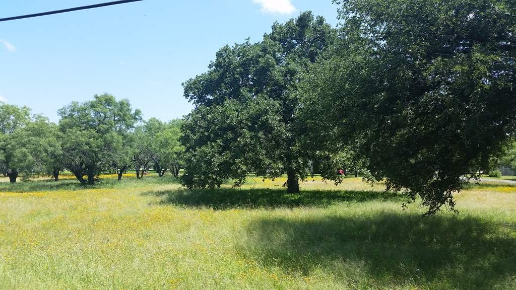 Additional photo for property listing at Heron  Highland Haven, Texas 78654 United States