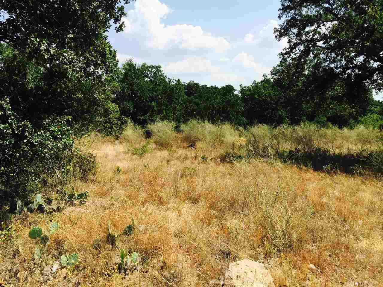 Additional photo for property listing at Brent  Kingsland, Texas 78639 United States