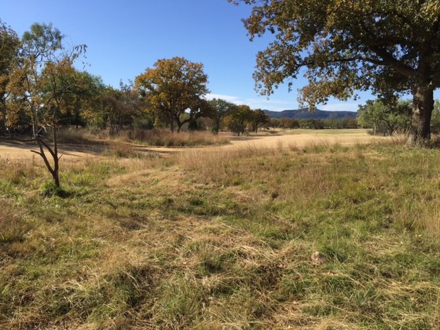 Additional photo for property listing at Lot 53 Chaumont  Kingsland, Texas 78639 Estados Unidos