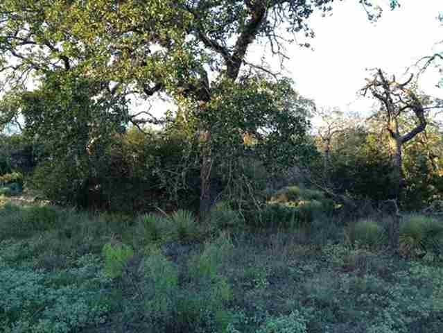 Additional photo for property listing at Briarway  Granite Shoals, Texas 78654 United States
