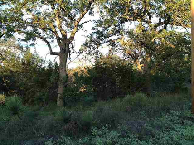Additional photo for property listing at Briarway  Granite Shoals, Texas 78654 Estados Unidos