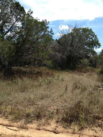 Additional photo for property listing at Gardenia  Kingsland, Texas 78639 Estados Unidos