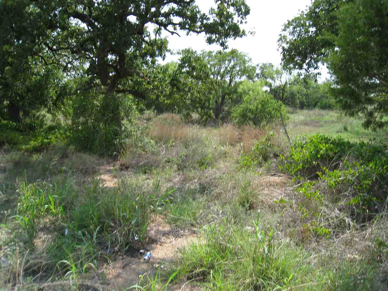 Additional photo for property listing at Lot 790 Ridgeview  Kingsland, Texas 78639 Estados Unidos