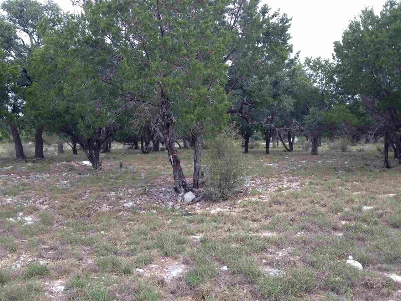 Additional photo for property listing at 14021 Palomino Pass  Horseshoe Bay, Texas 78657 United States