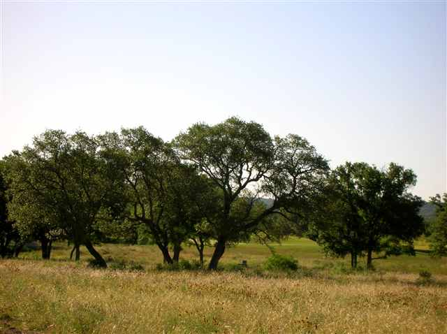 Additional photo for property listing at Lot 187 La Serena Loop Lot 187 La Serena Loop Horseshoe Bay, Texas 78657 Estados Unidos