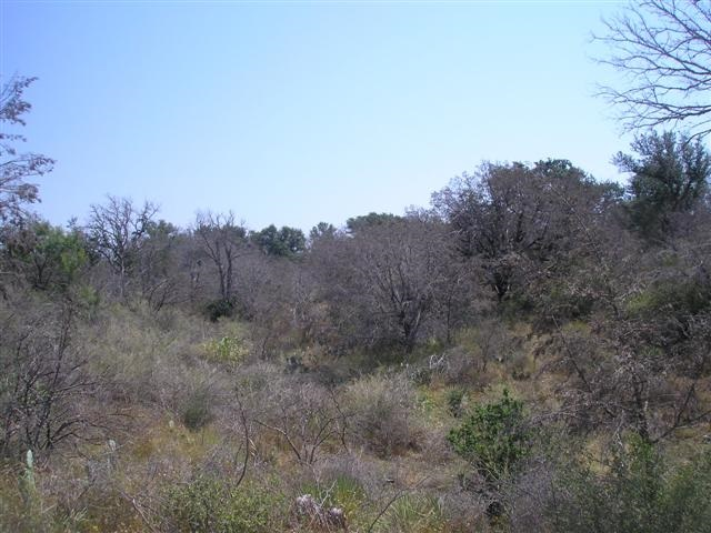Additional photo for property listing at 944 Sandy Mountain Drive  Sunrise Beach, Texas 78643 Estados Unidos