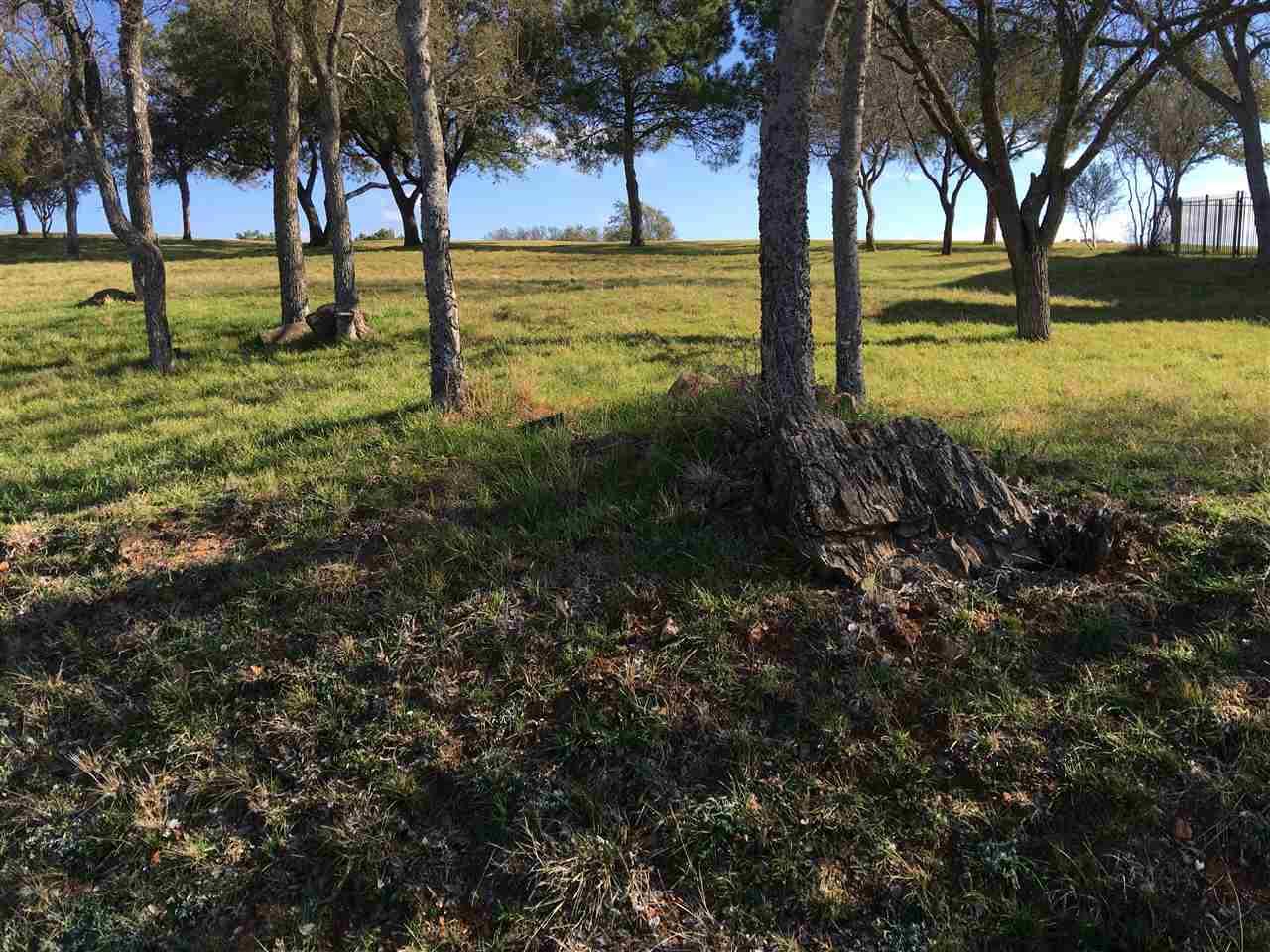 Additional photo for property listing at 1311 Cats Eye  Horseshoe Bay, Texas 78657 Estados Unidos