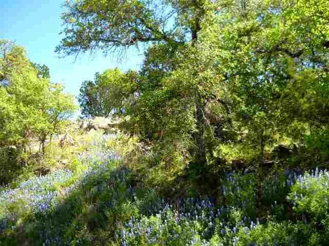Terreno por un Venta en W3032 Desert Rose South Horseshoe Bay, Texas 78657 Estados Unidos