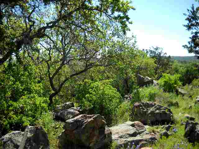 Additional photo for property listing at W3033 Desert Rose South  Horseshoe Bay, Texas 78657 Estados Unidos