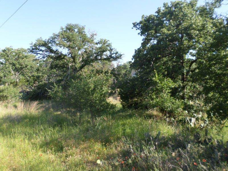 Additional photo for property listing at 480-483 W Castleberry Drive  Granite Shoals, Texas 78654 United States