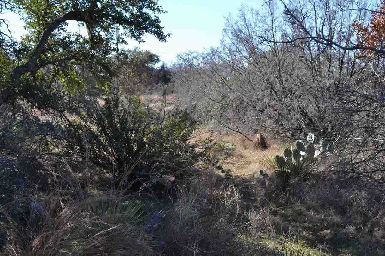 Additional photo for property listing at Lots 387-388 Castlewood  Granite Shoals, Texas 78654 Estados Unidos