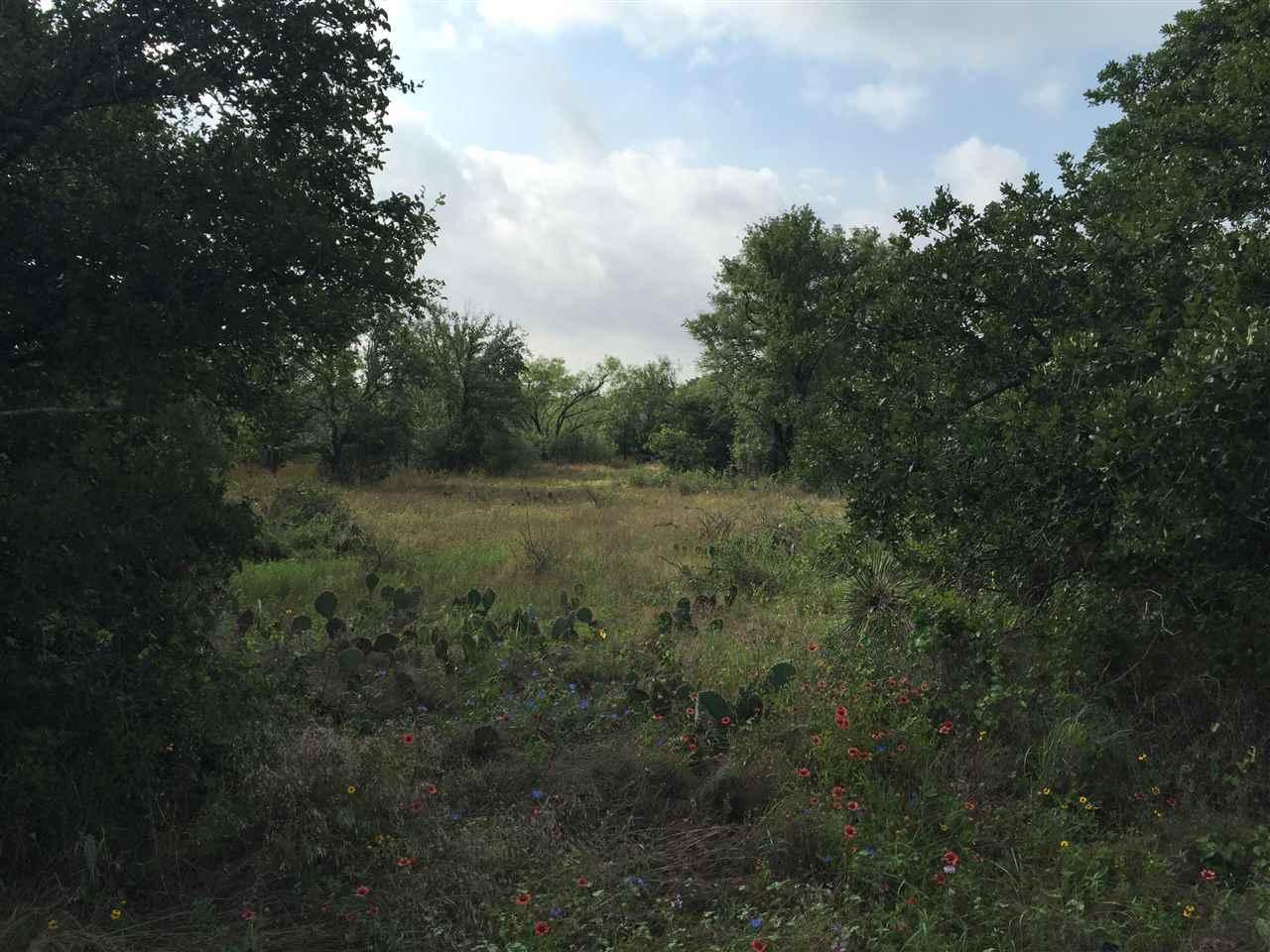 Additional photo for property listing at Skyline Drive  Kingsland, Texas 78639 Estados Unidos