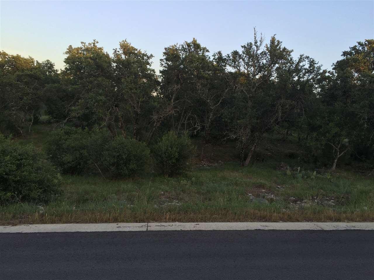 Terreno por un Venta en 308 Left Lane Horseshoe Bay, Texas 78657 Estados Unidos