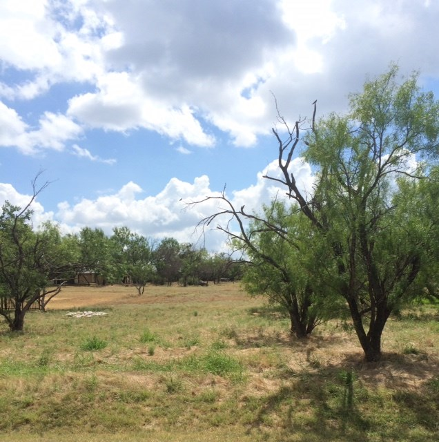Additional photo for property listing at 9064 Hi Circle West  Horseshoe Bay, Texas 78657 Estados Unidos