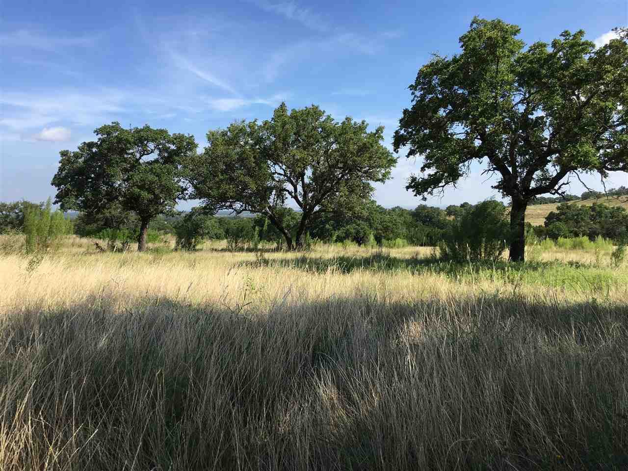 Land for Sale at Lot 165 Cedar Mountain Drive Marble Falls, Texas 78669 United States