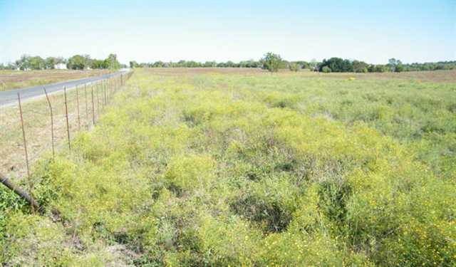 Additional photo for property listing at Hwy. 29 Hwy. 29 Burnet, Texas 78611 Estados Unidos