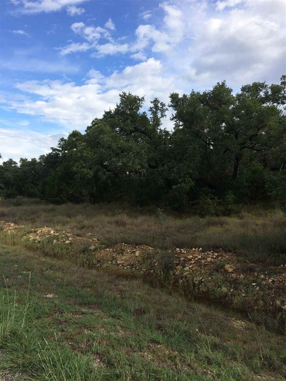 Additional photo for property listing at 116 Riley Wood Drive  Blanco, Texas 78606 Estados Unidos