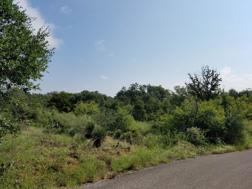 Land for Sale at Comanche Trail Kingsland, Texas 78639 United States