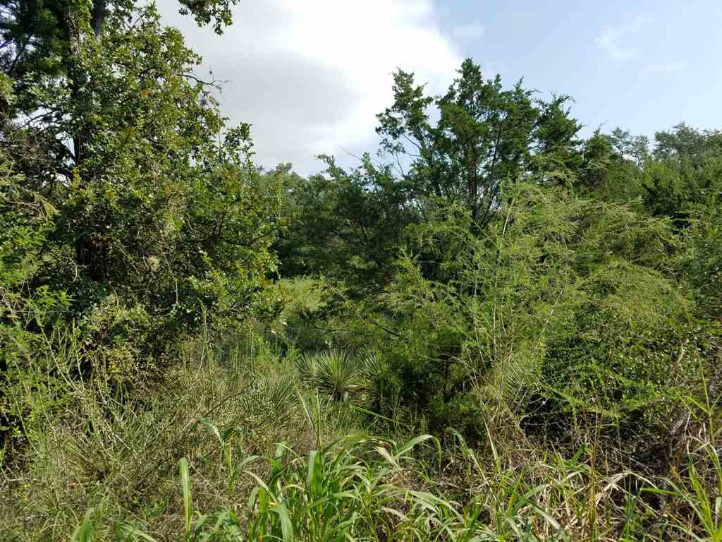 Additional photo for property listing at Comanche Trail  Kingsland, Texas 78639 United States