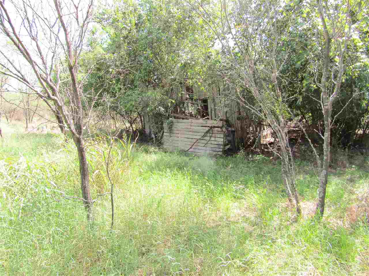 Additional photo for property listing at Prt of Tract 14 Indian Trail  Kingsland, Texas 78639 Estados Unidos