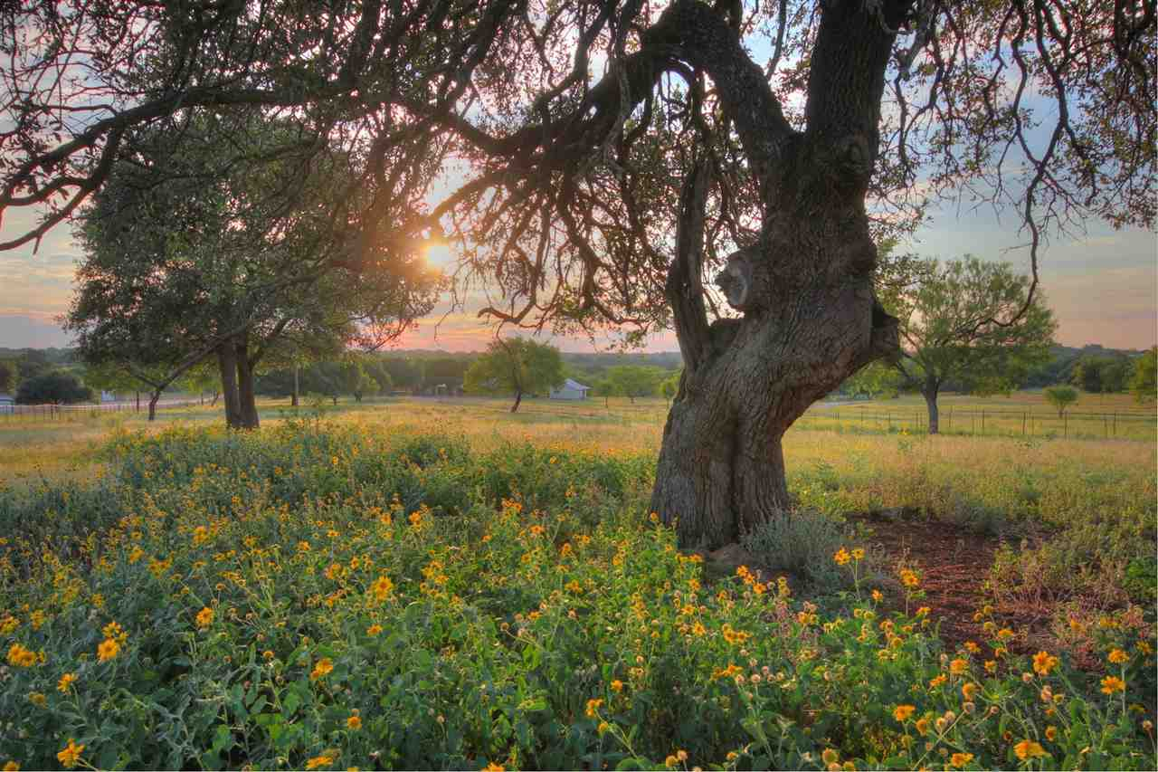 Single Family Home for Sale at 1985 Ranch Road 2323 1985 Ranch Road 2323 Llano, Texas 78643 United States