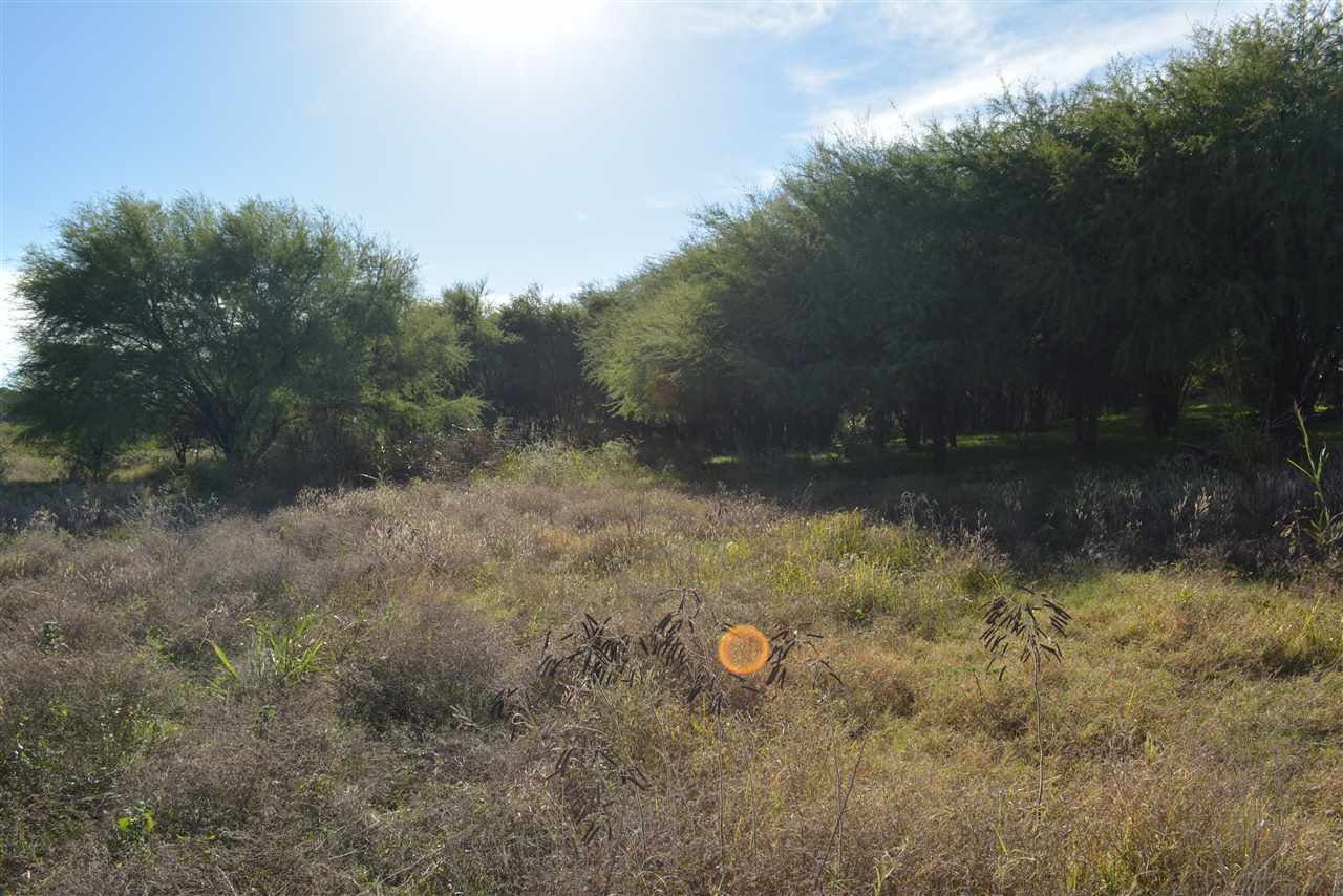 Additional photo for property listing at Lot 18 J Williams Drive Lot 18 J Williams Drive Spicewood, Texas 78669 Estados Unidos