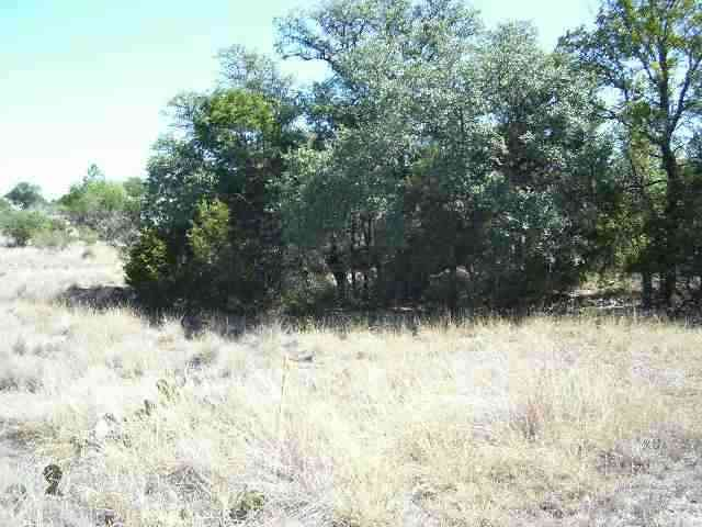 Additional photo for property listing at K-1041 Chameleon  Horseshoe Bay, Texas 78657 Estados Unidos