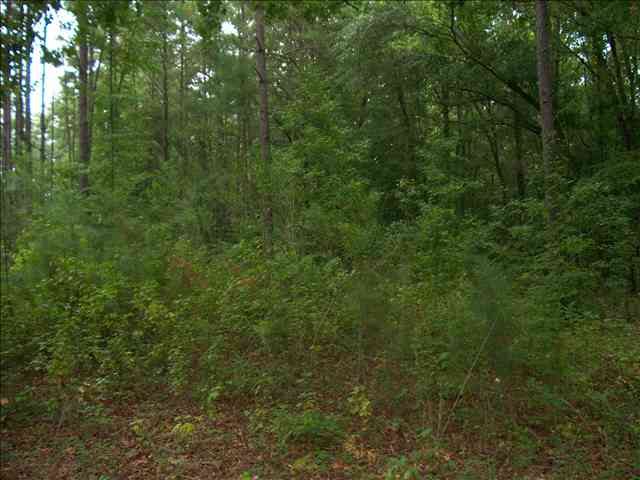 Lot 4 DENNIS STATION ROAD, Eatonton, GA 31024