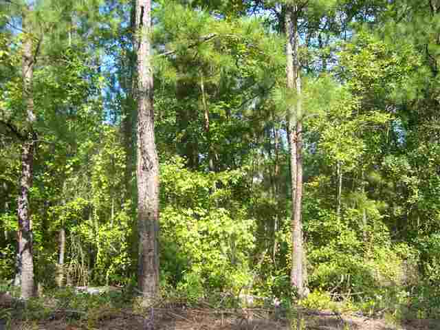 Lot 22 BLUEGILL ROAD, Eatonton, GA 31024