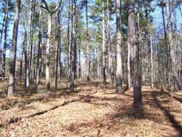 LOT 56 FOREST RIDGE CIRCLE, Eatonton, GA 31024