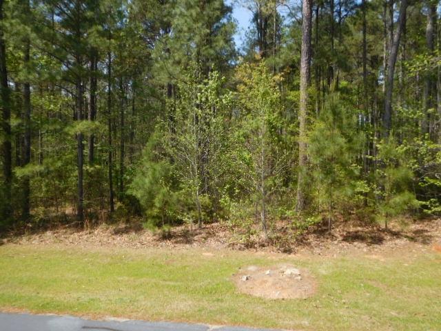 1061 BIG WATER POINT PL, Lake Oconee Reynolds Landing in Greene County, GA 30642 Home for Sale