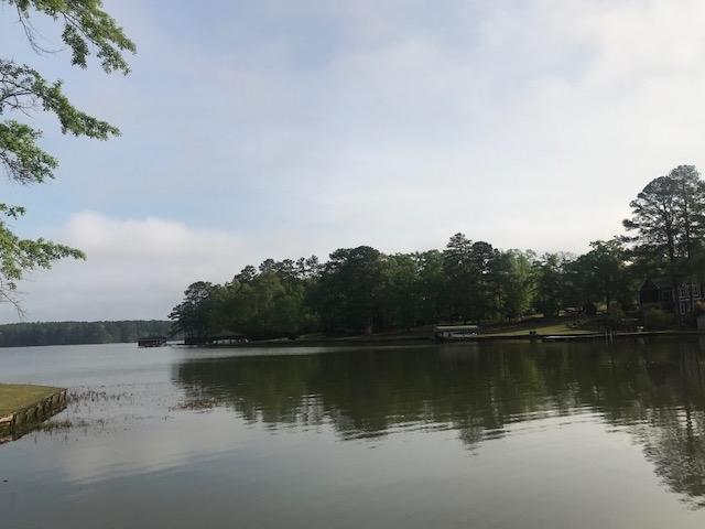 239 W LAKEVIEW DRIVE AS, Lake Sinclair, Georgia