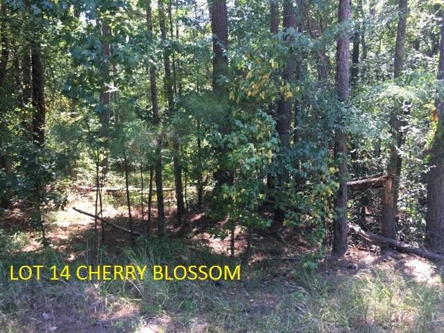 Lot 14 CHERRY BLOSSOM AS, Lake Sinclair, Georgia