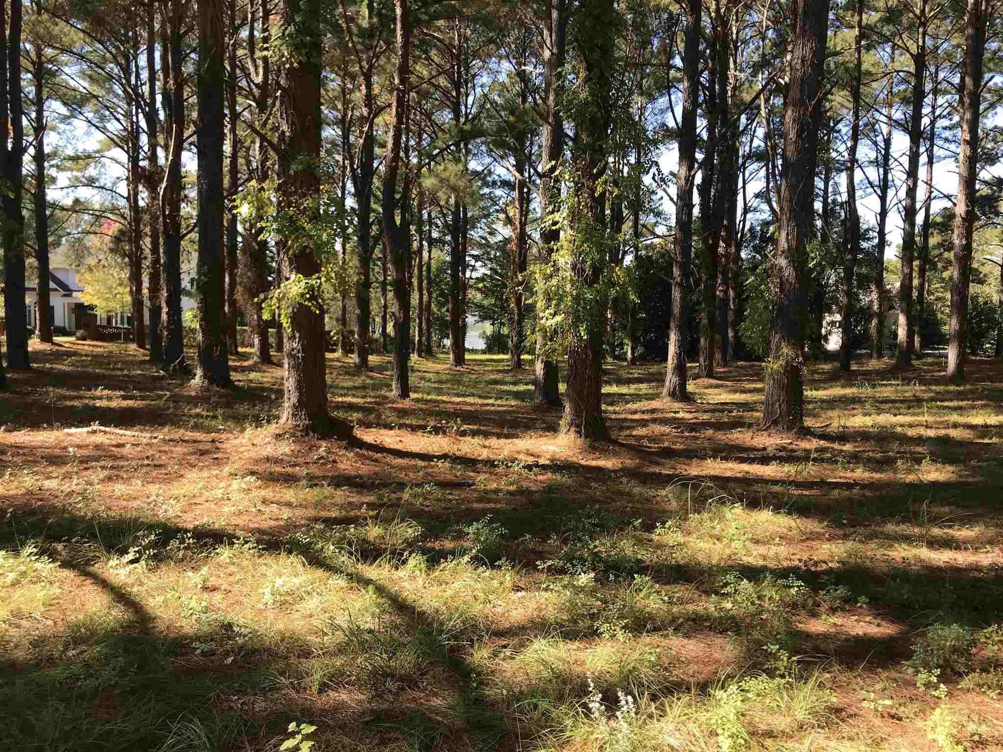 Lot 48 CHEHAW COURT AS, Lake Sinclair in Putnam County, GA 31024 Home for Sale