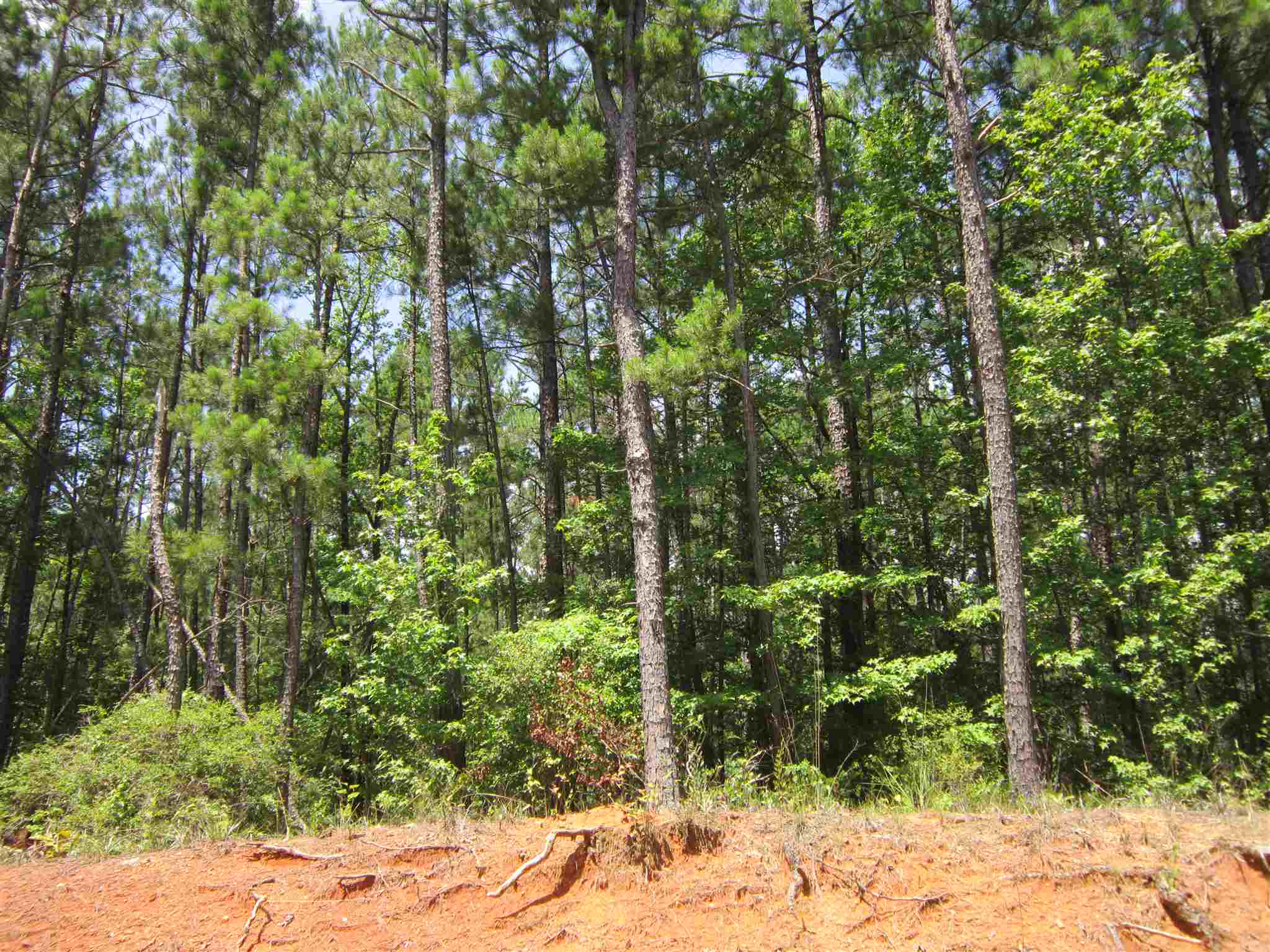 Lot 33 ZINNIA RD AS,Lake Sinclair  GA
