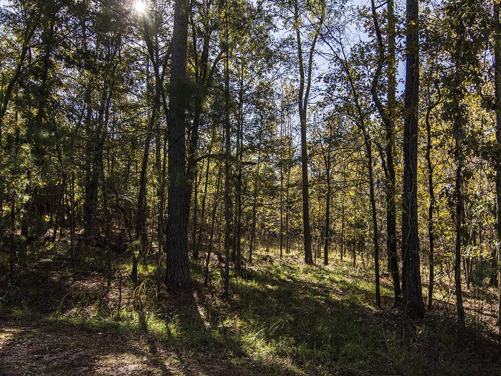 1000 SNUG HARBOR COURT AS, Lake Oconee Reynolds Landing in Greene County, GA 30642 Home for Sale