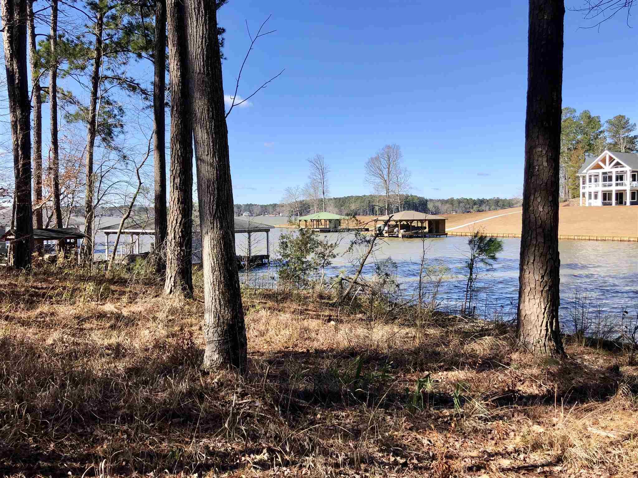 110 LEPRECHAUN LANE AS, Lake Sinclair, Georgia