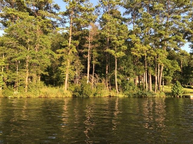 0 SYCAMORE LANE AS, Lake Sinclair, Georgia