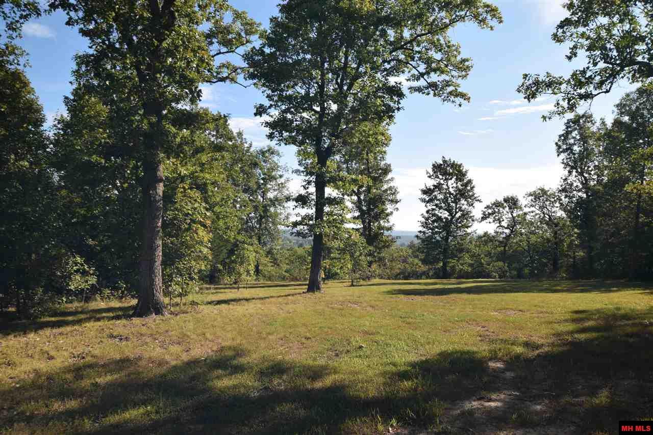 275 CHAINLINK MOUNTAIN ROAD | Protem, MO